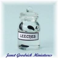 Miniature Glass Jar of Leeches
