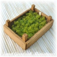 Dolls House Seed tray