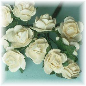Miniature Cabbage Roses