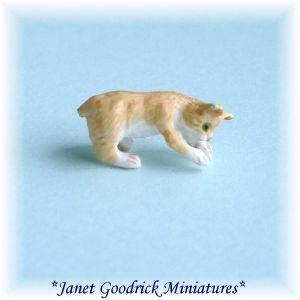 Miniature Kitten